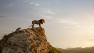 img roi lion